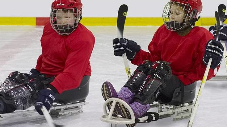 Фото: playsledgehockey.ru